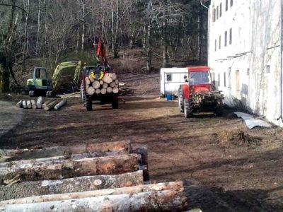 Ecoforest Andreis: ditta forestale che opera nel rispetto dell'ambiente