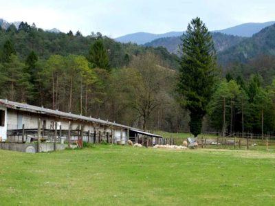 Sottosopra: fattoria didattica e sociale