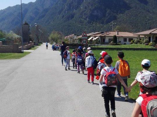 consorzio_valli_dolomiti_attività scuola